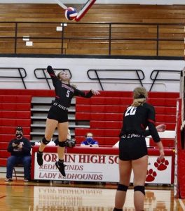 Halcomb eager to be back as Lady Colonel volleyball trainer